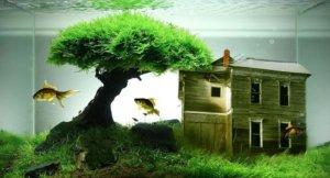fish tank decorations ideas